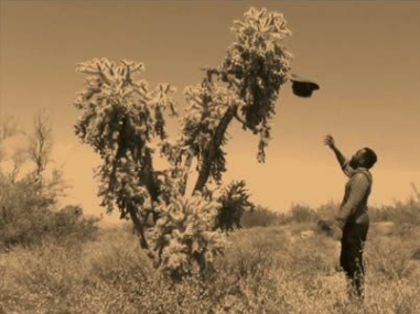 Samson Kambalu,  Moses (Burning Bush ), 2015, Digital Color, 50 sec.