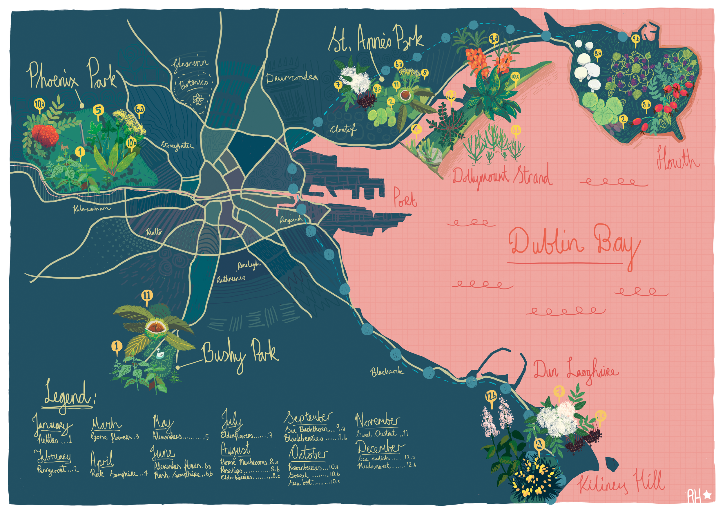 Foraging Map of Dublin