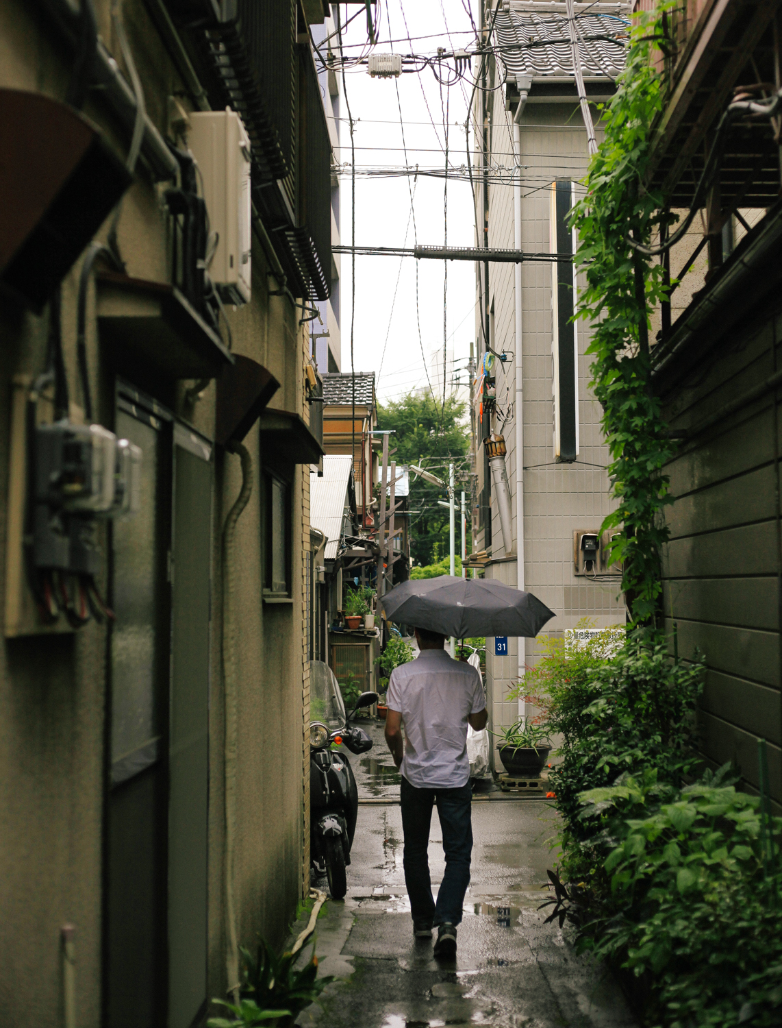 Walking through one of the last days of the rainy season. It's been sunny and (still) humid ever since.