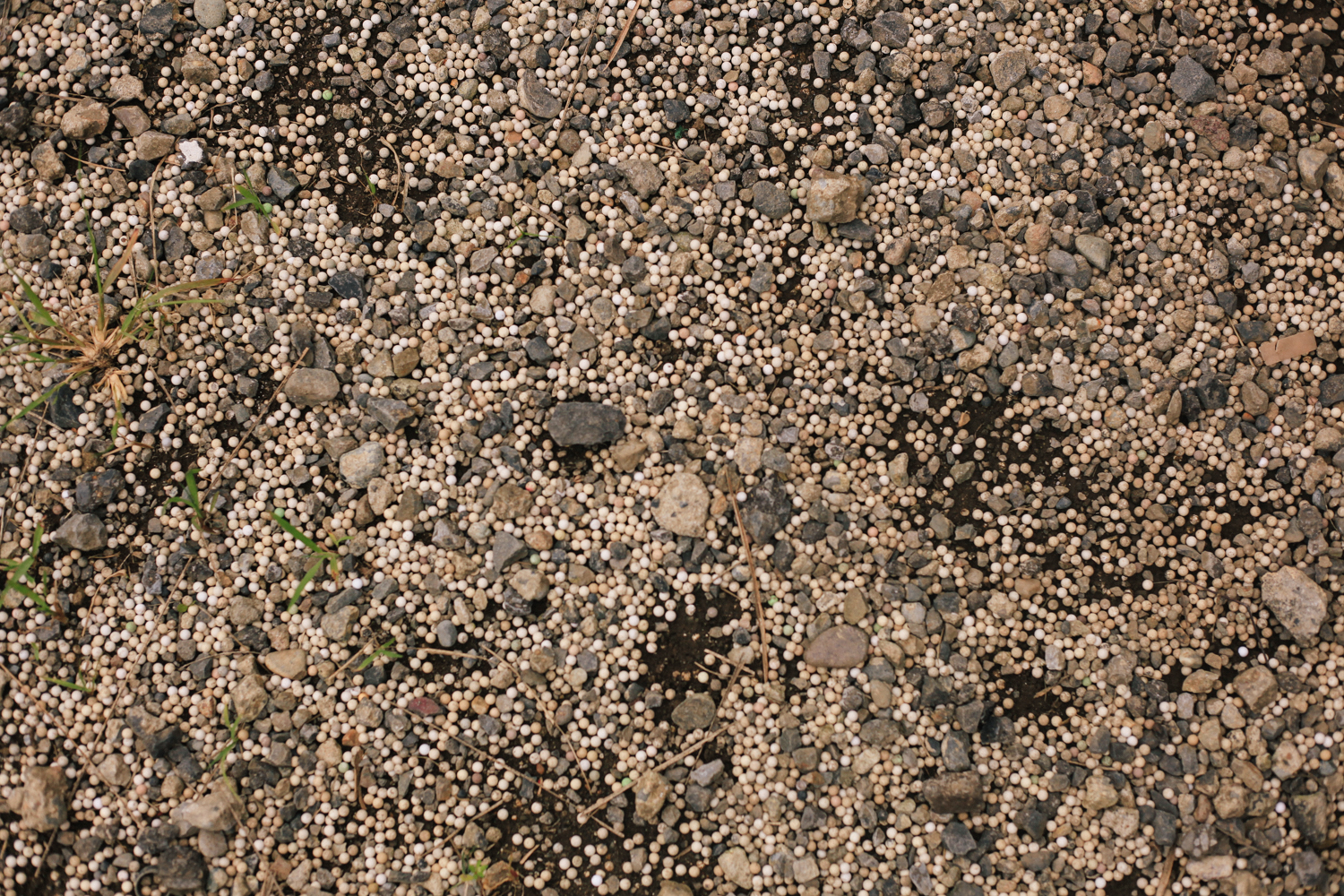 Millions of airsoft pellets litter the ground of this place.