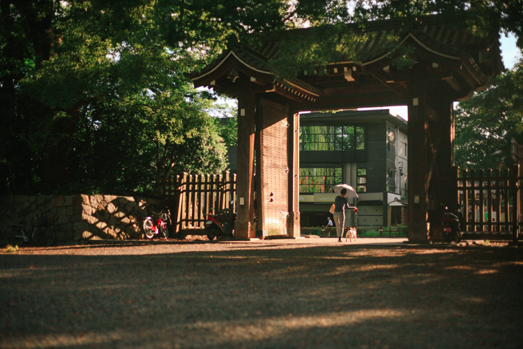 The gates that lead into a large Park in Kyoto.