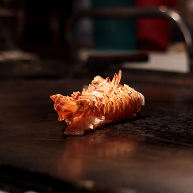 That sizzle when lobster hits our grill! 🦞 🔥 . . . . #knoxville #easttennessee #knoxvilletn #865life #knoxeats #knoxvillefood #knoxvilleblogger #lobster #hibachi