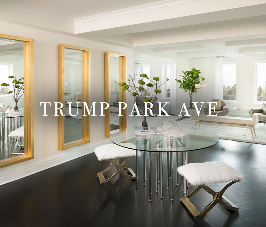 TrumpParkAve_coverimage_edit.jpg