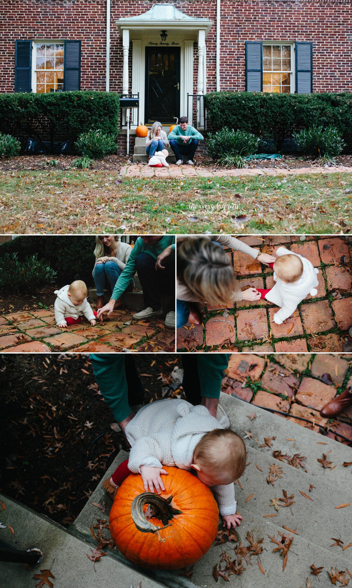 fall-pumpkin-pictures.jpg
