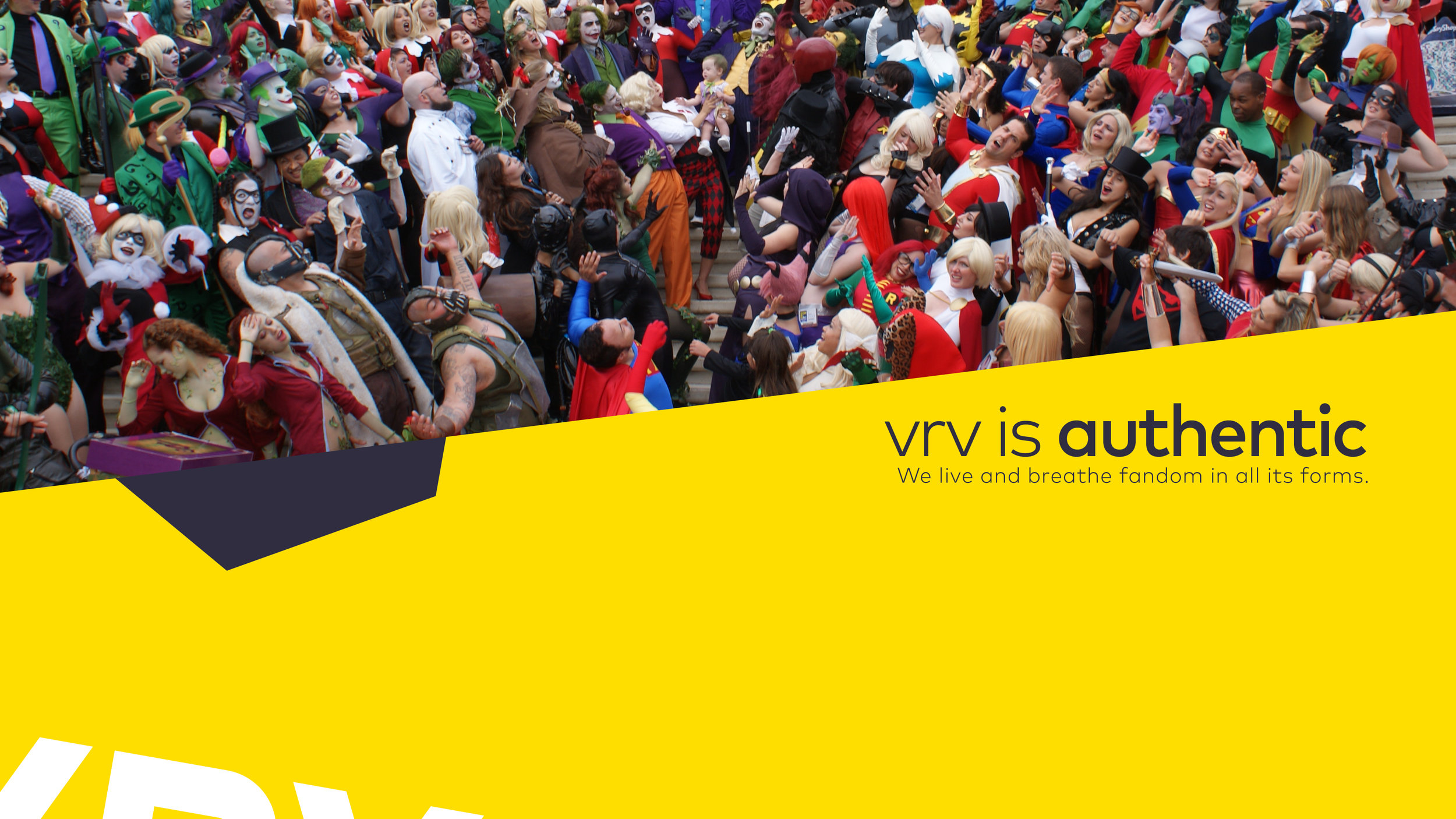VRV_BrandBook_Alpha1_Deck_16x93.jpg