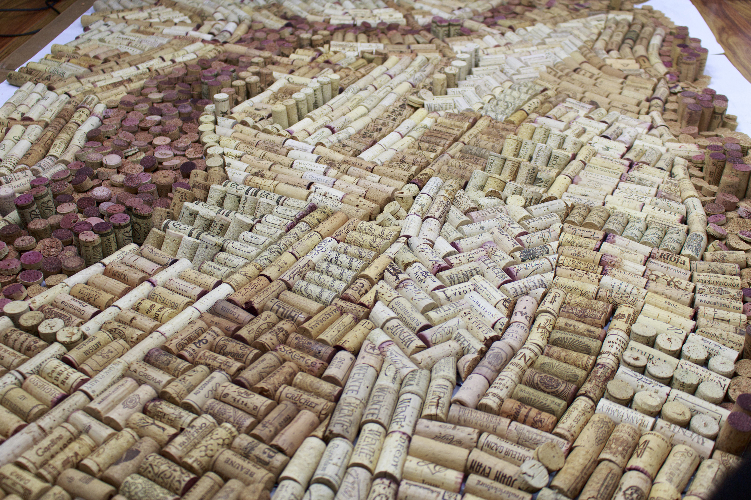 cork map process_NicoleLicht