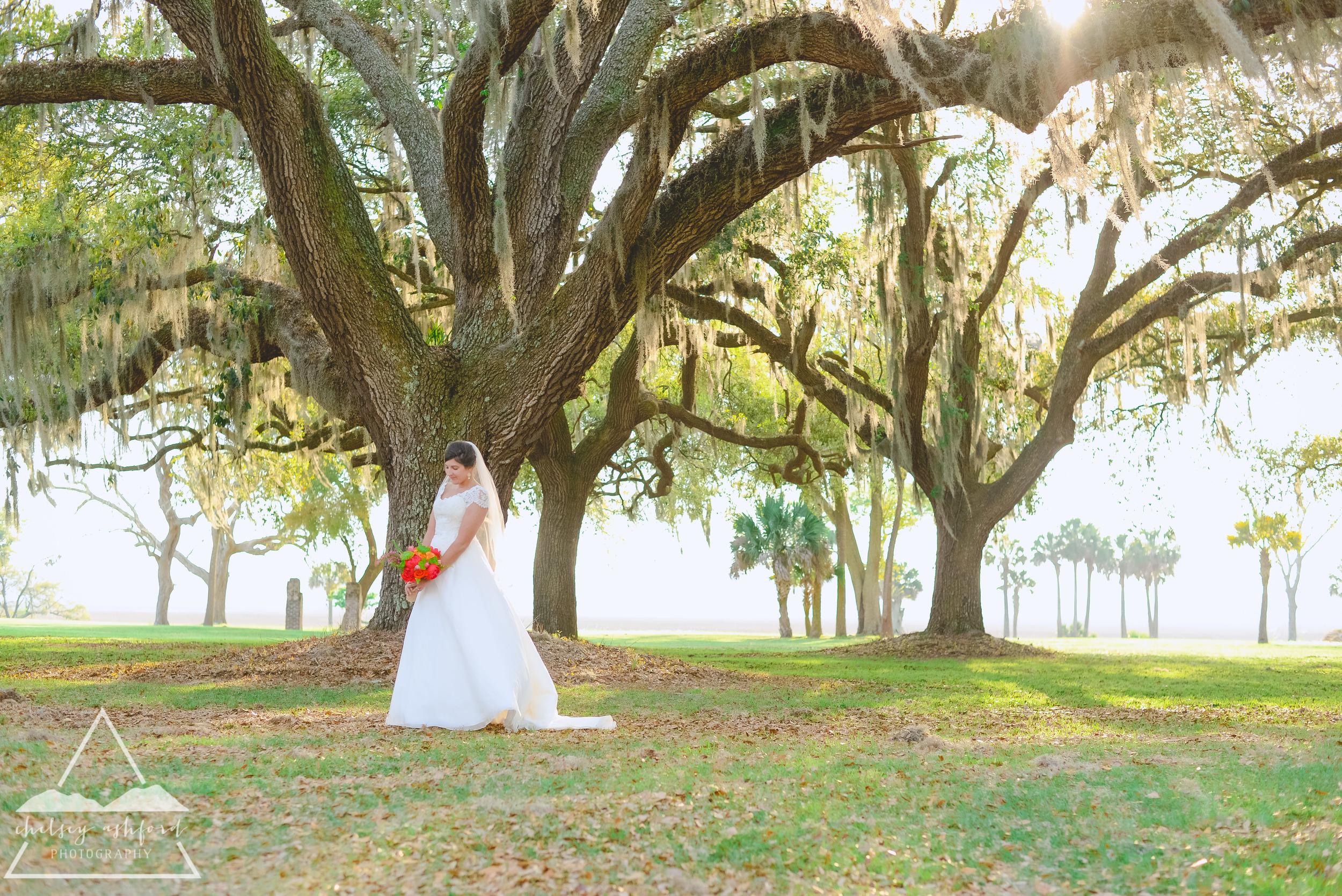 Sylvia_bridals_web-13.jpg
