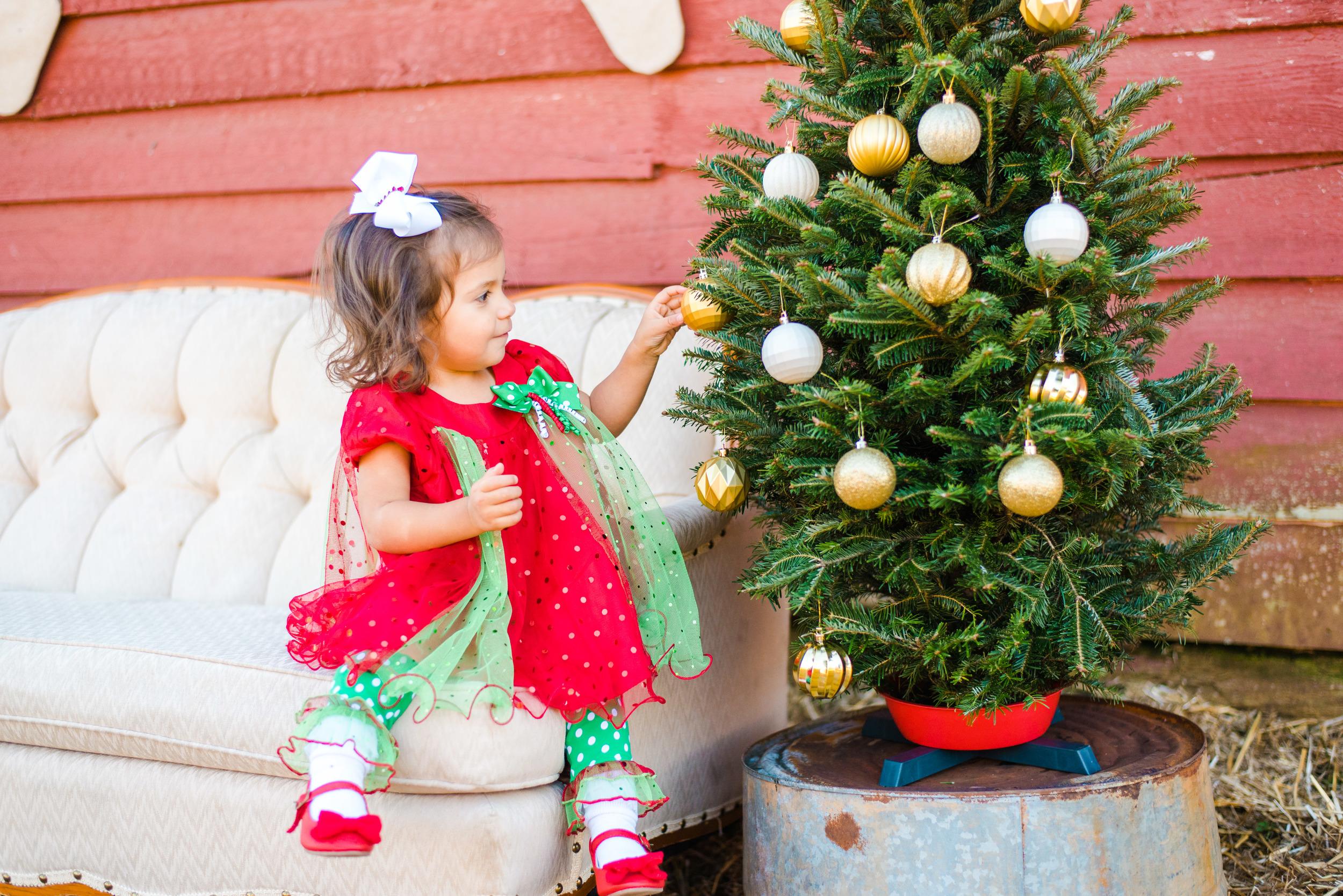 Christmas mini web-15.jpg