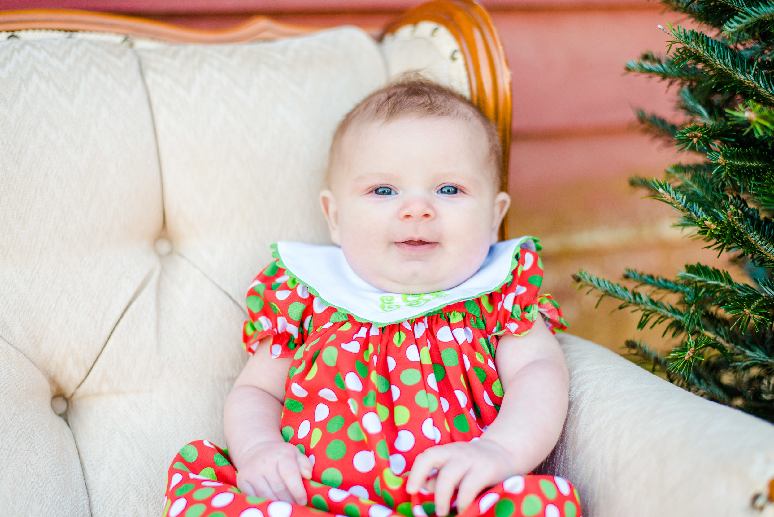 Christmas mini web-38.jpg
