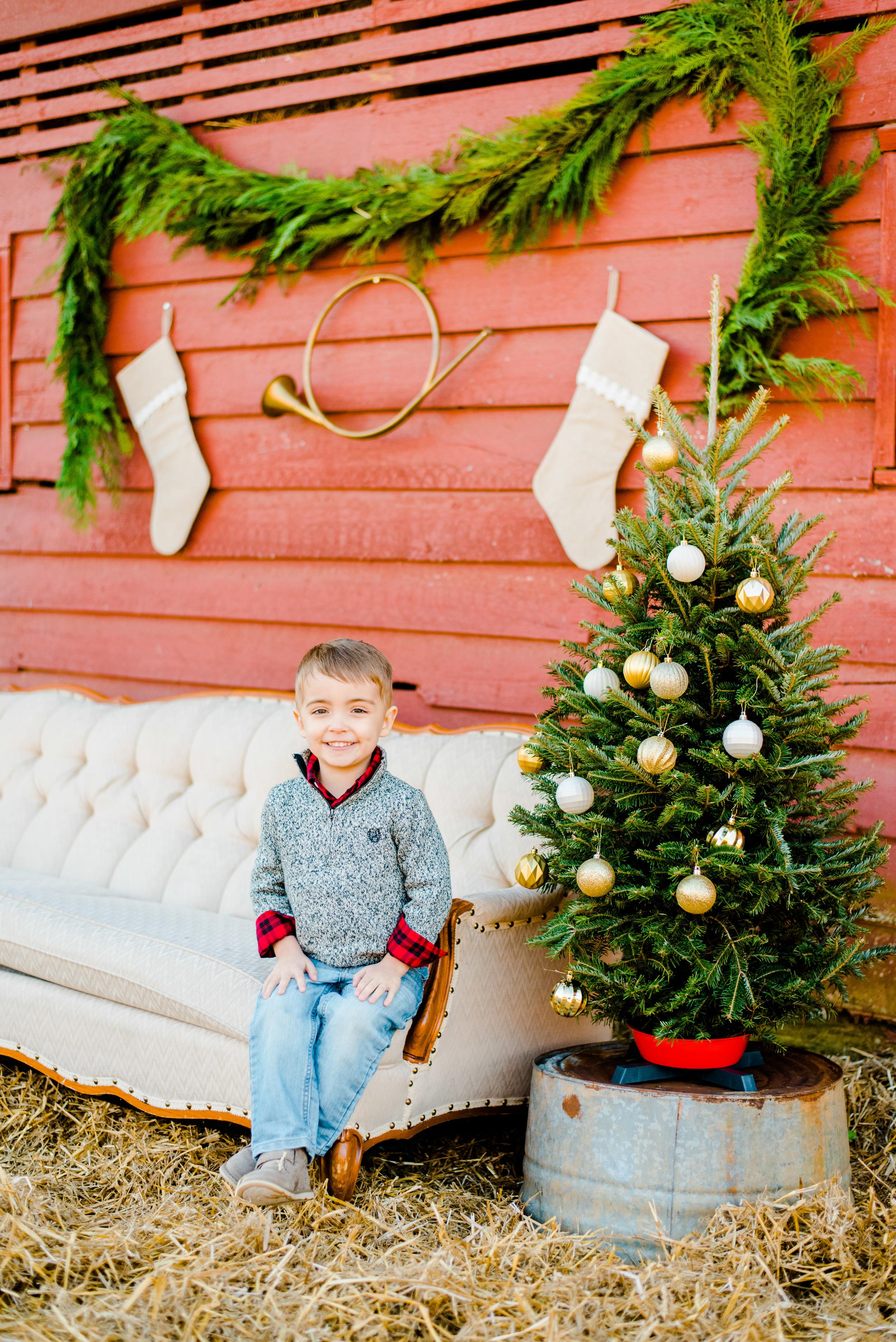 Christmas mini web-92.jpg