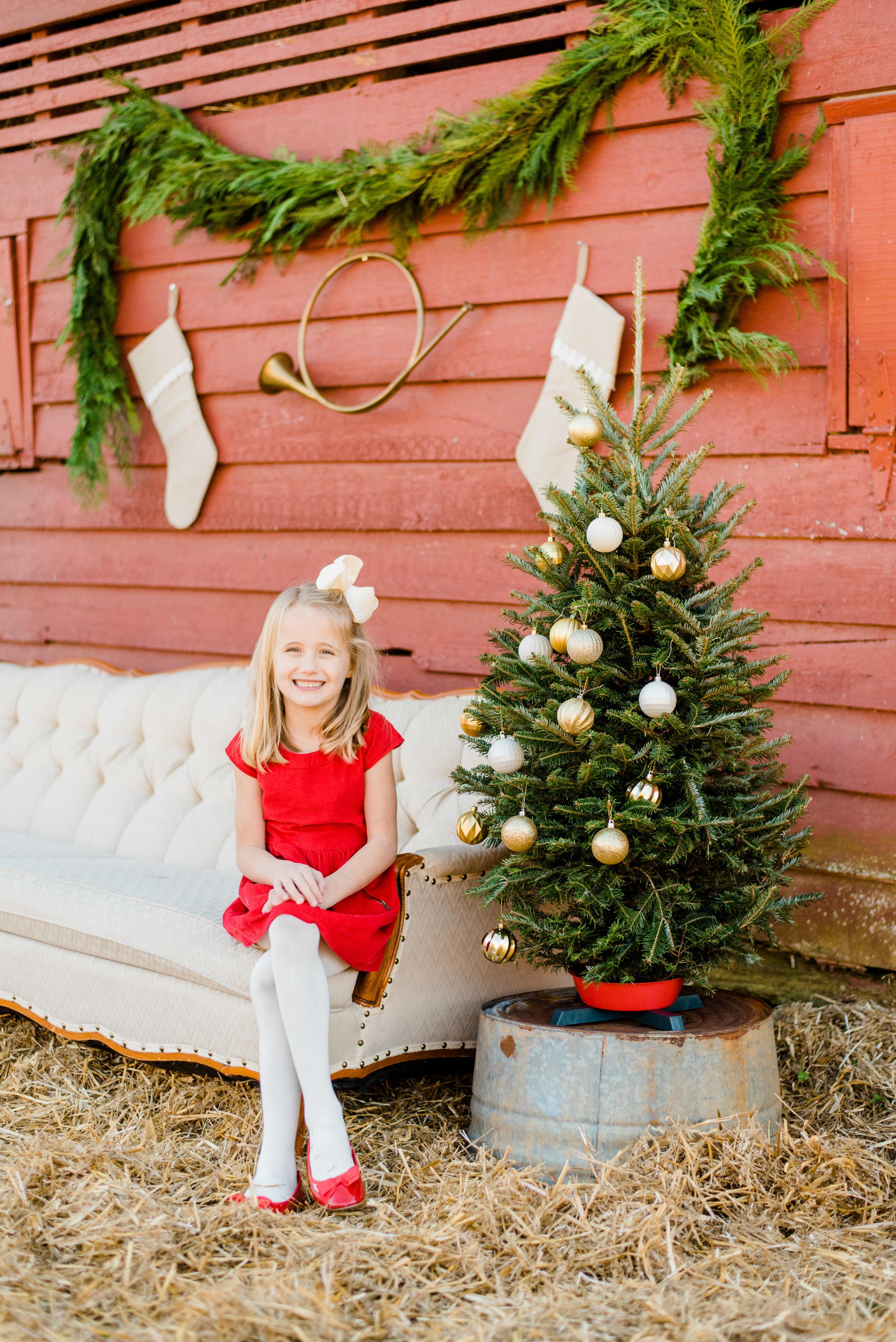 Christmas mini web-118.jpg