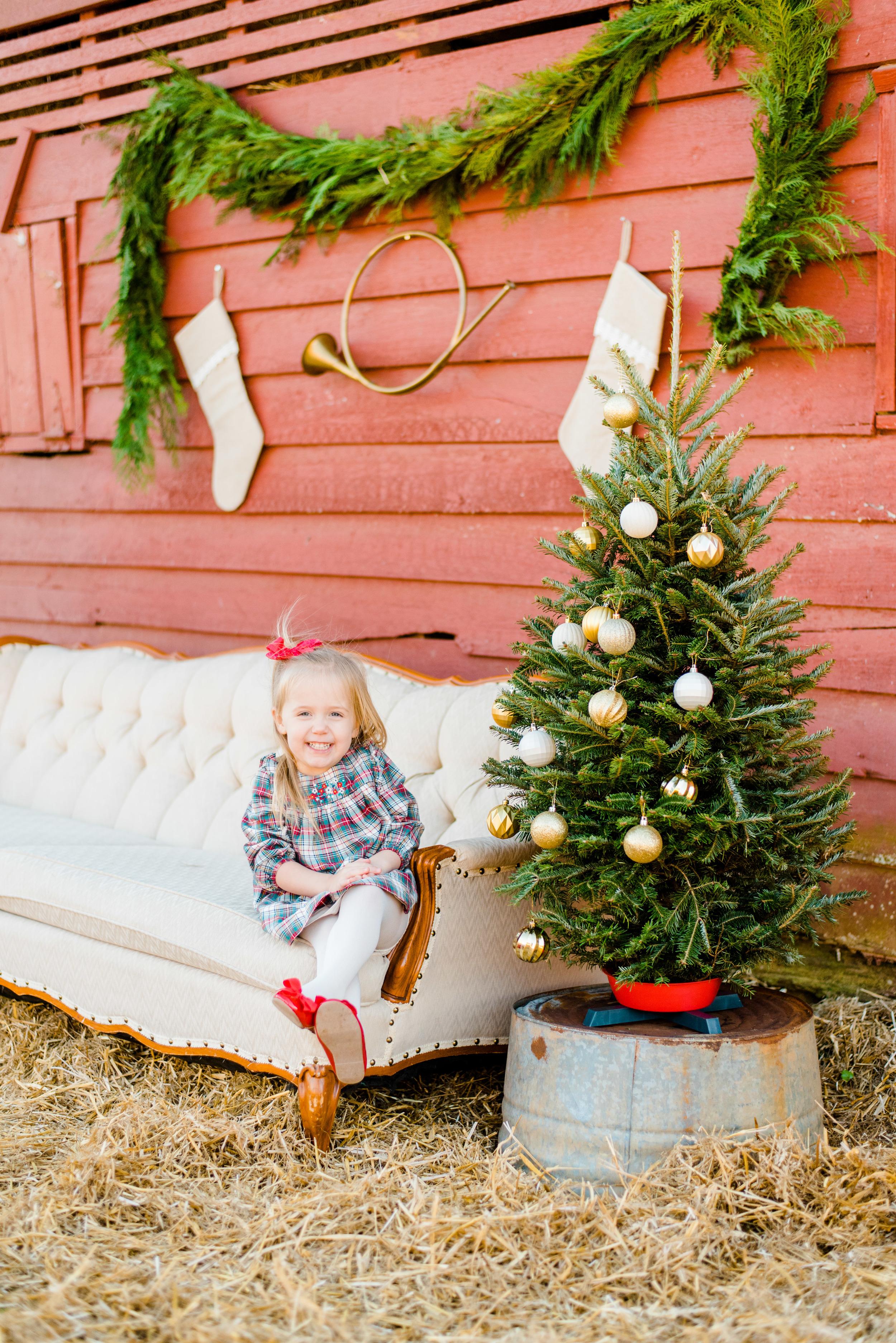 Christmas mini web-120.jpg