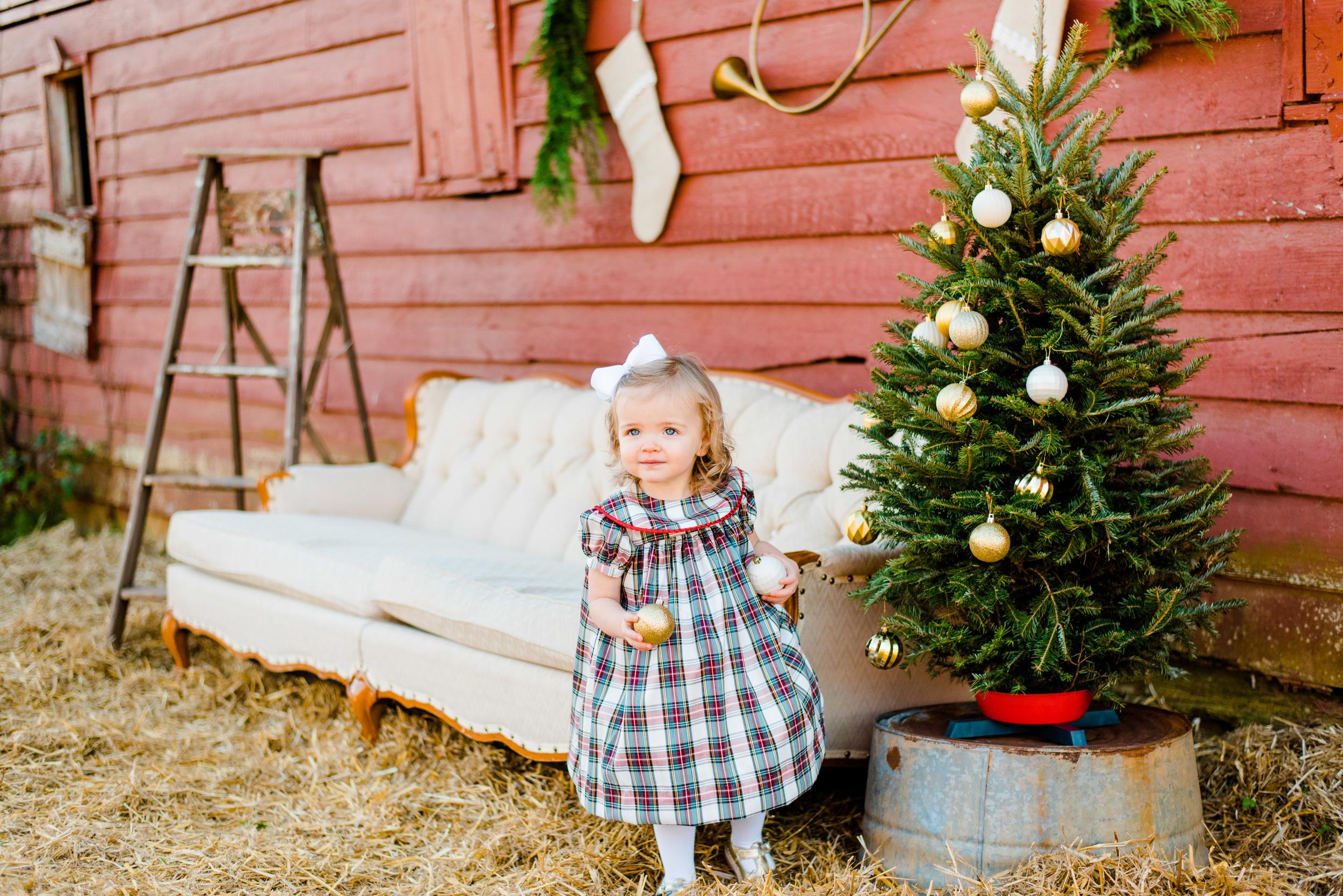 Christmas mini web-126.jpg