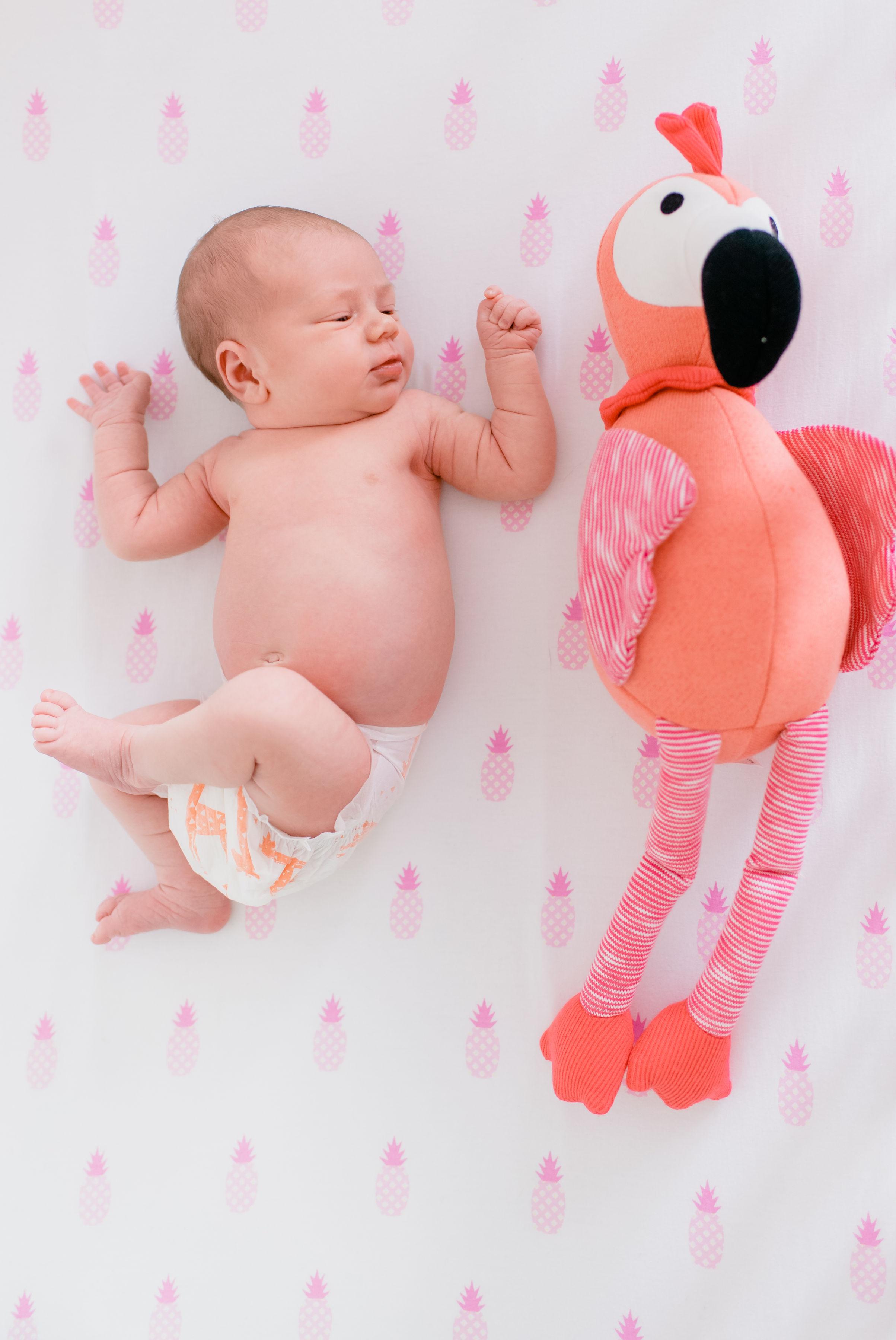 Charlotte_newborn-4.jpg