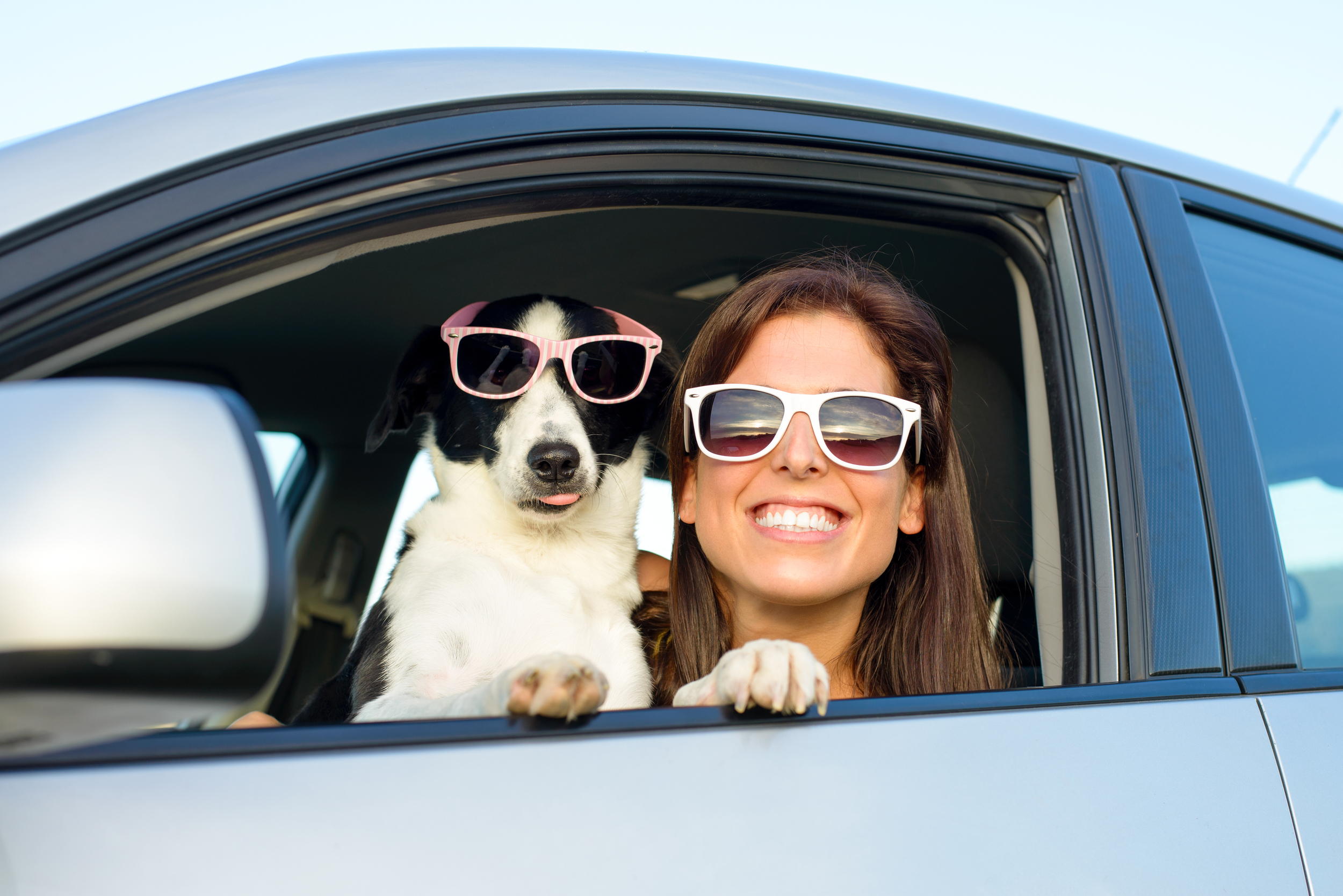 Automobile Insurance.  With millions of cars on the road it is important to protect yourself and your loved ones.