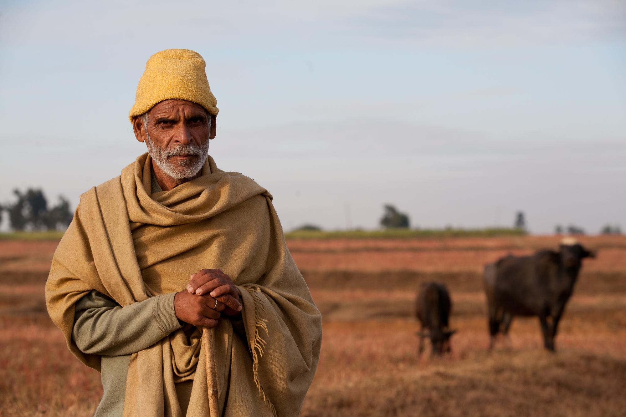 indianindia-11.jpg