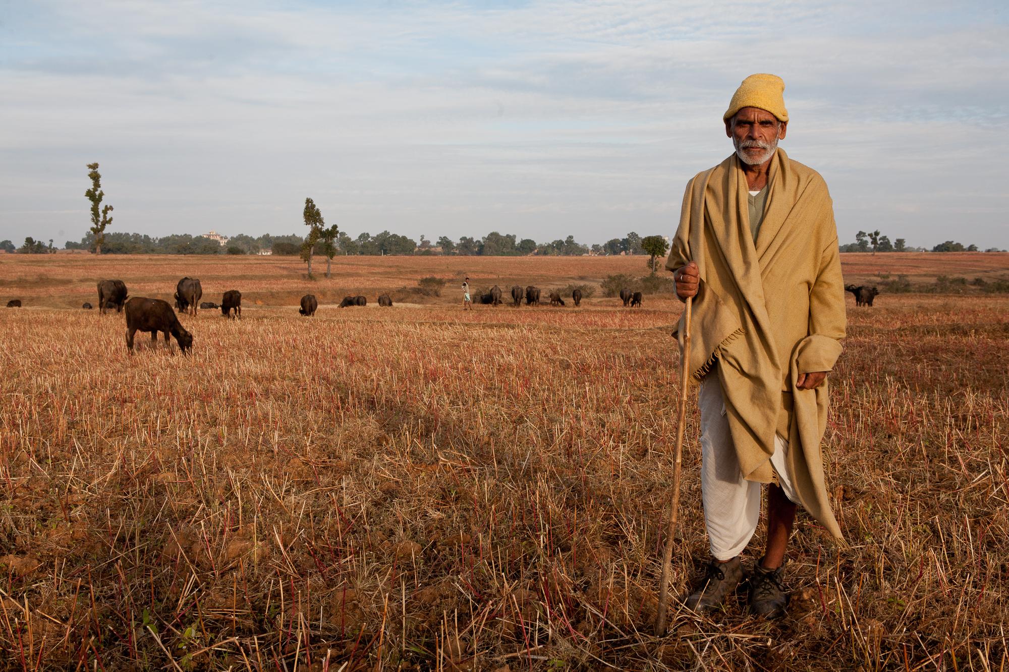 indianindia-10.jpg