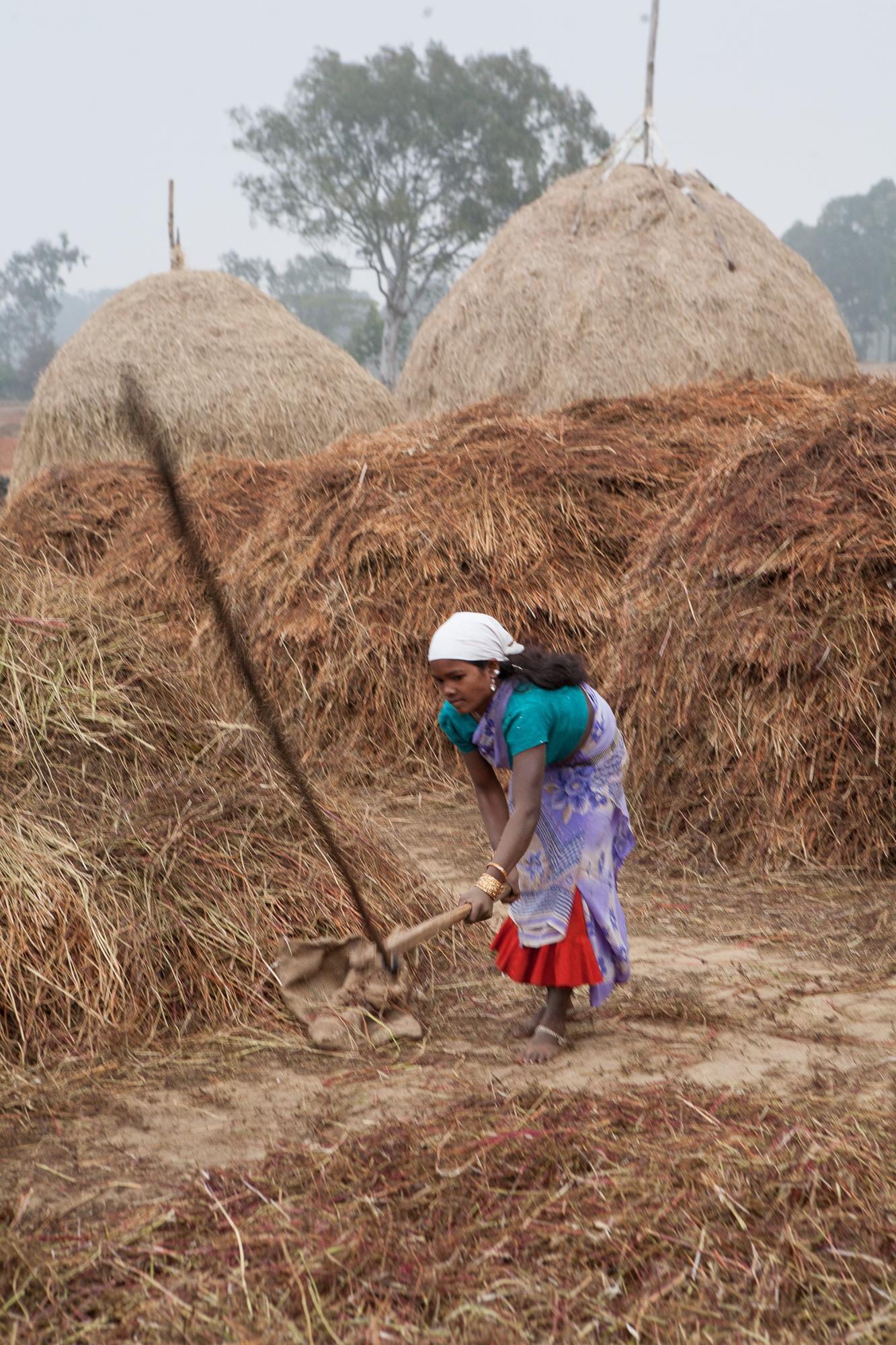 indianindia-13.jpg