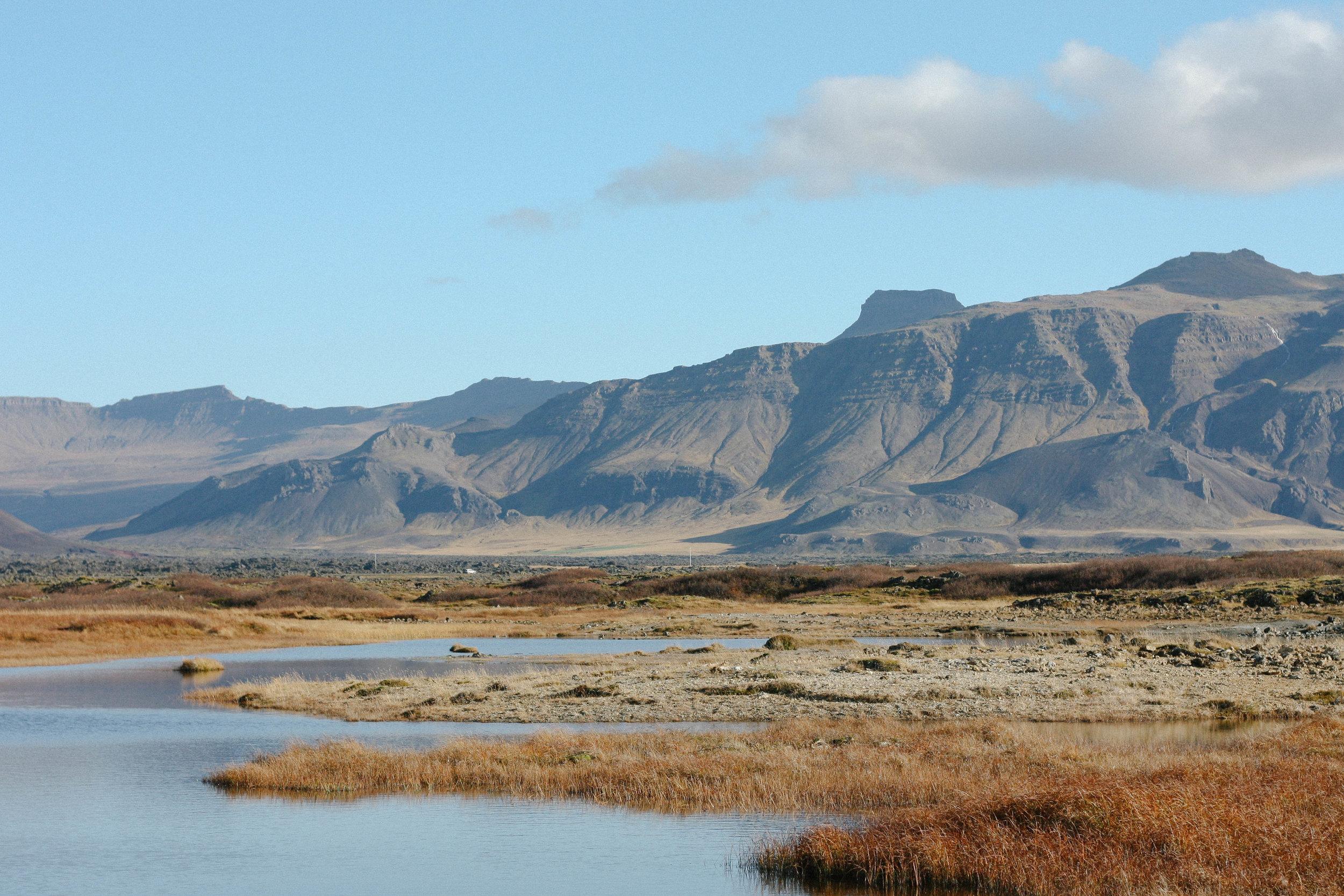icelandfield2.jpg