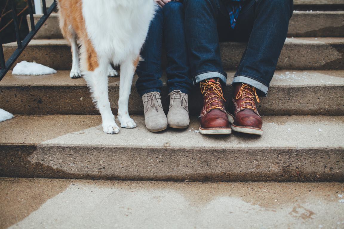 boots-dog.jpg