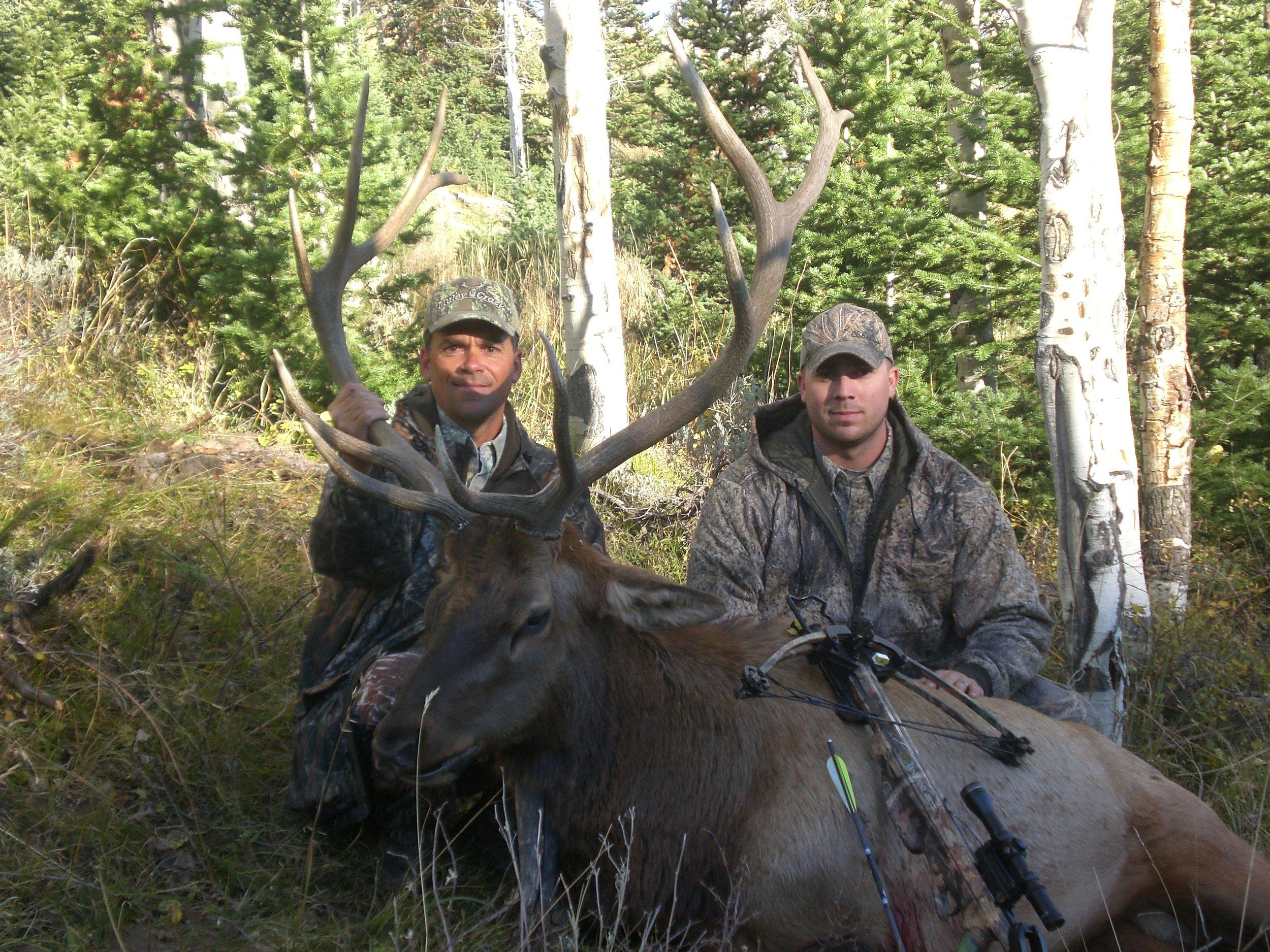 Wyoming09Elk_Little Mtns 159.jpg
