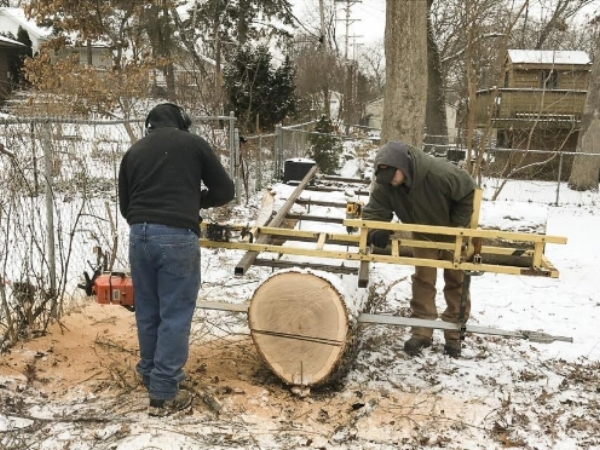 White oak log being cut with a portable sawmill.