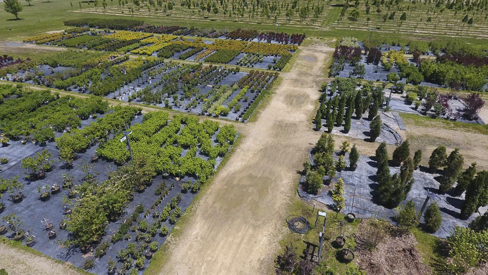 Winterland Nursery in Oregon, WI from above.