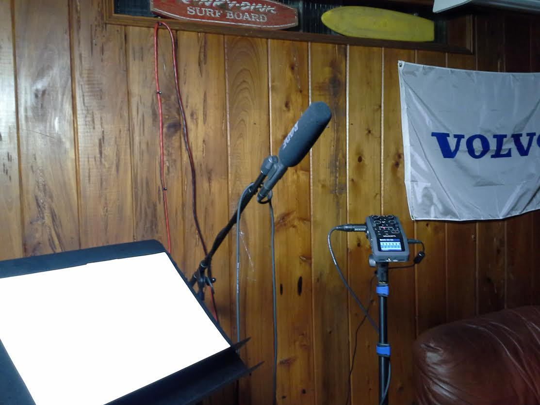 I recorded the vocals for this song in my basement. Note the awesome wood paneling.