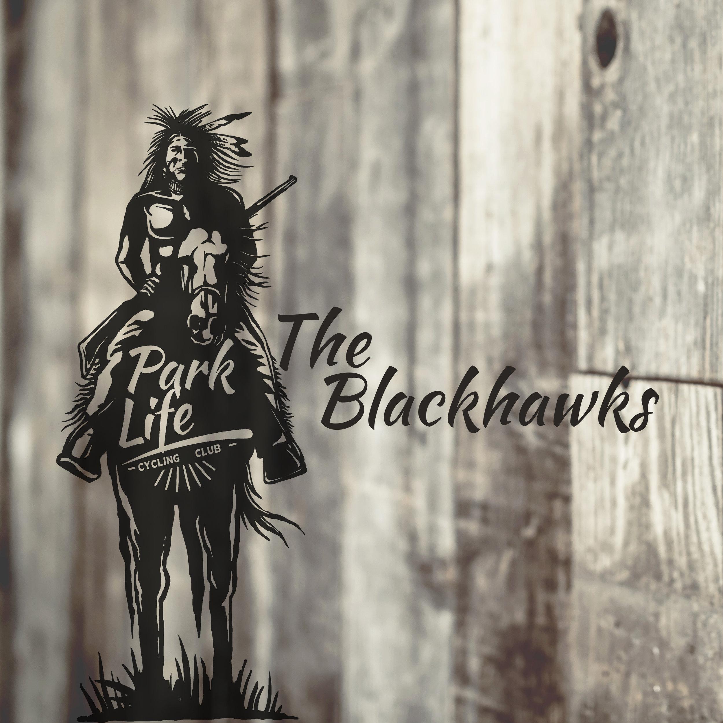 ParkLife-Blackhawks.jpg
