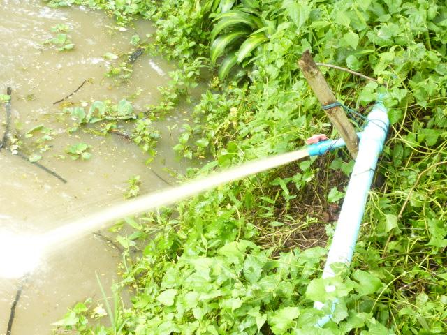 น้ำโคลนจากก็อกน้ำที่โรงเรียนม่อนแสงดาว