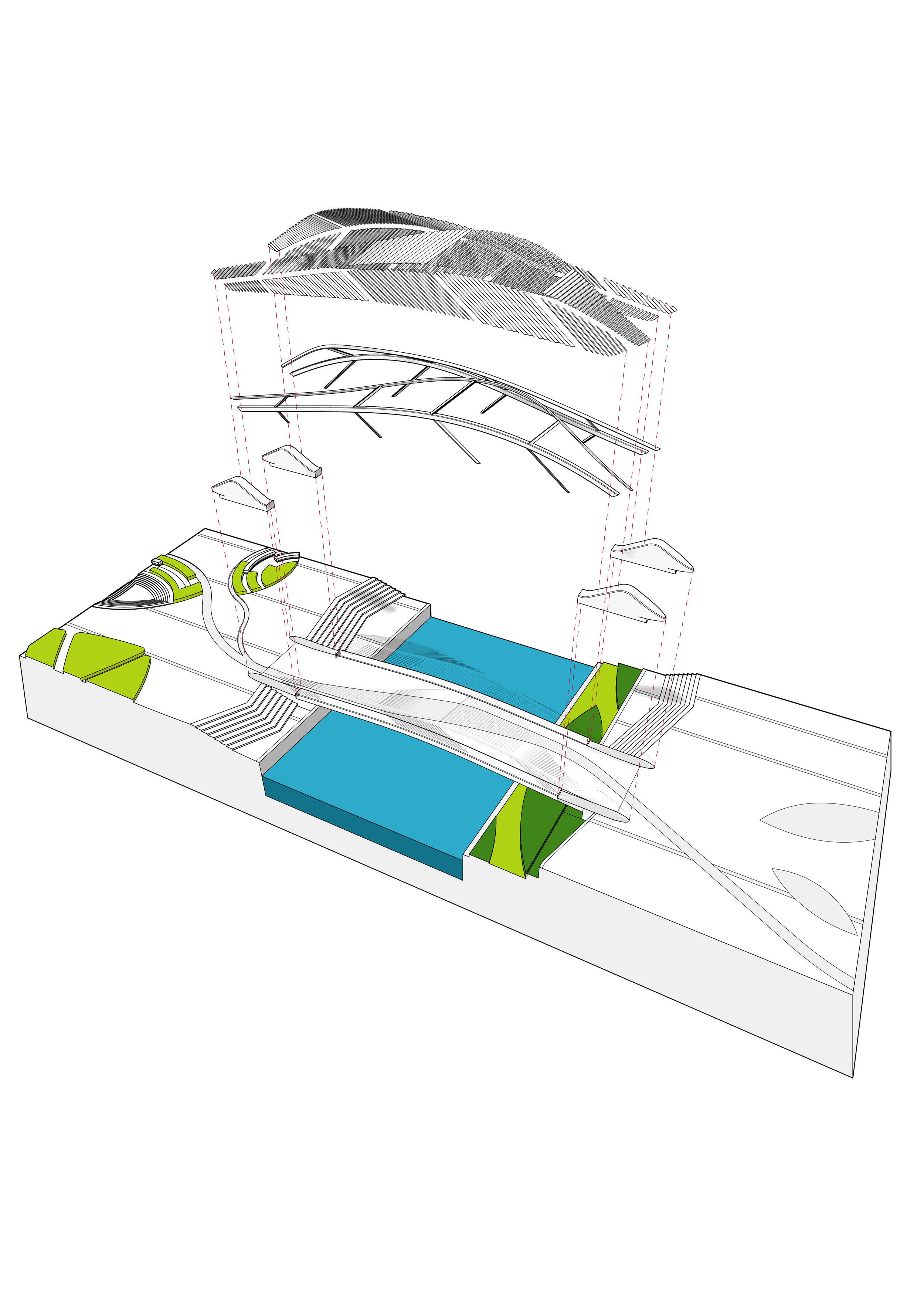 Diagram | Leaf vein patterns, structure and louver system