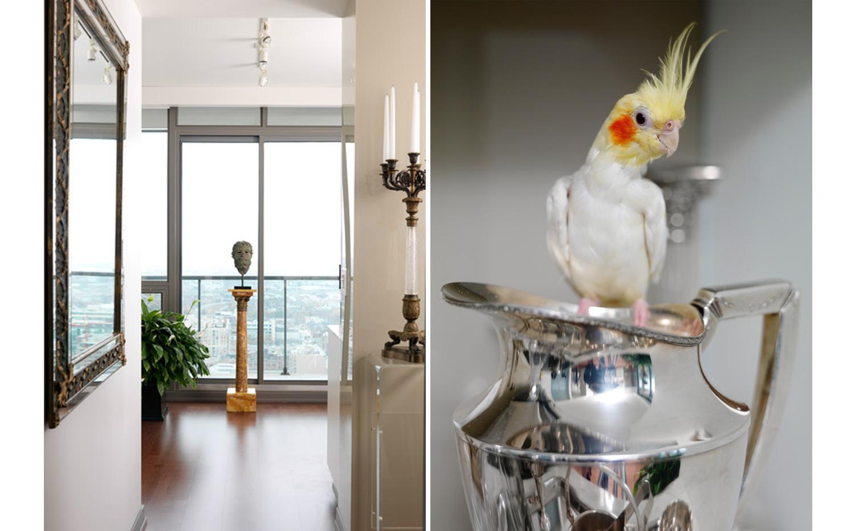 hallway-bird.jpg