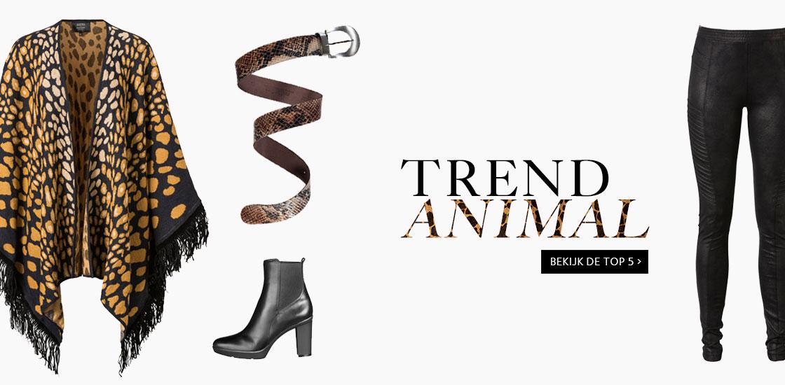 caroussel2_trend-animal.jpg