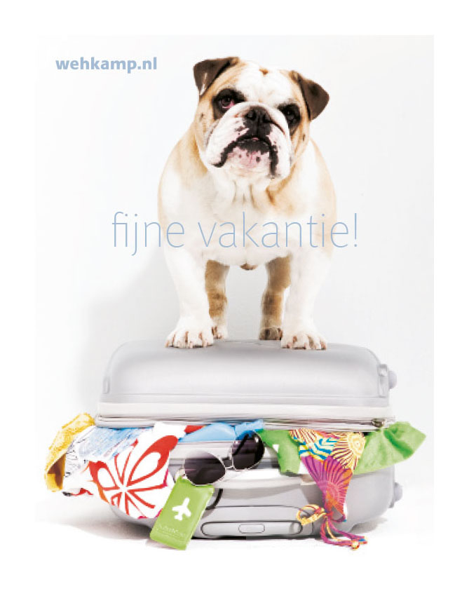 magazine_wehkamp-back.jpg
