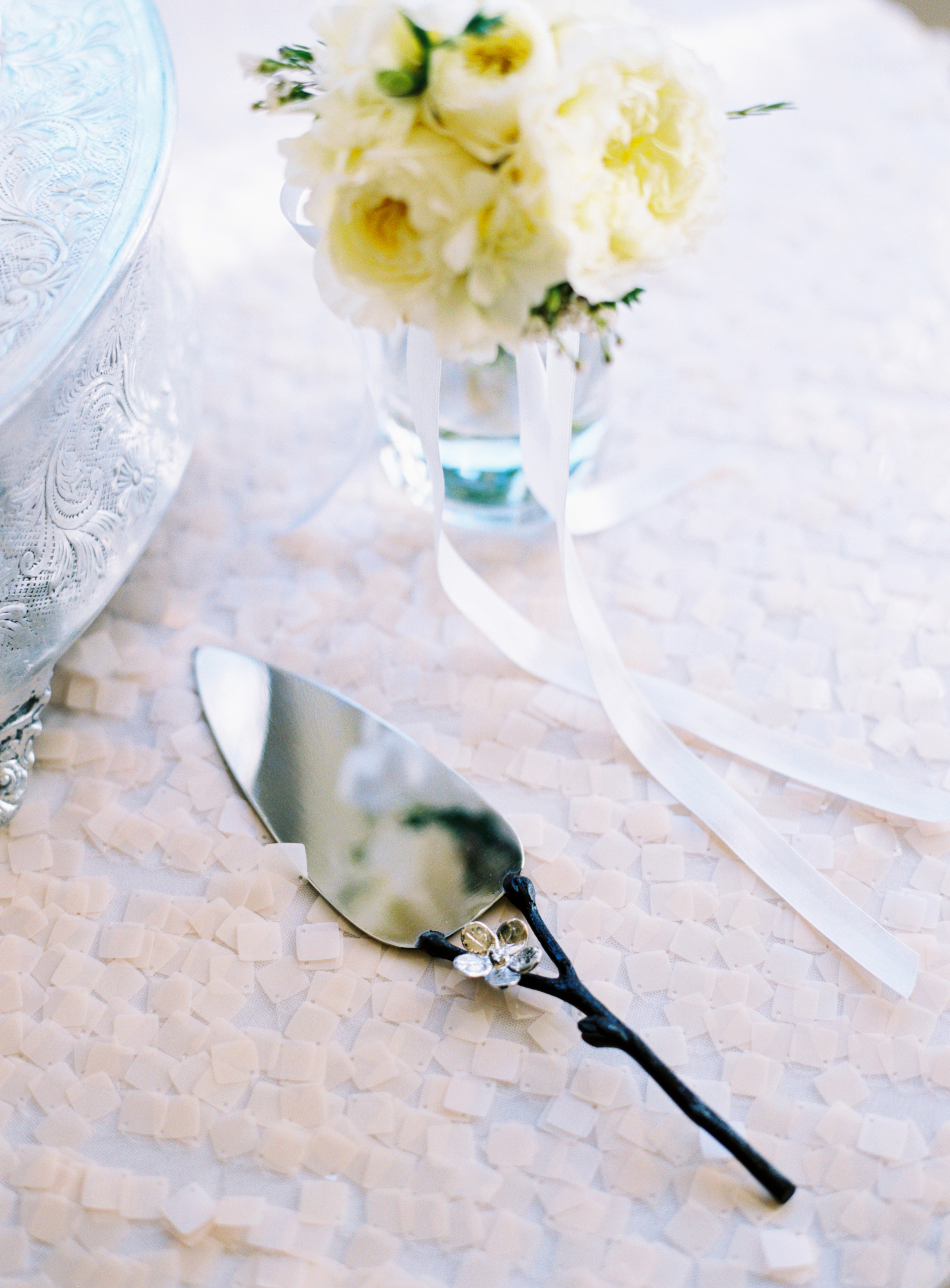 sapphireevents.com   Sapphire Events New Orleans   Austin Gros Photography   Montegut House Weddings and Events