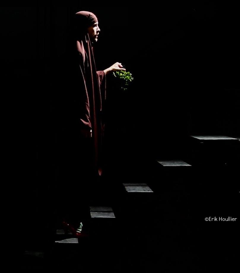 © Erik Houllier - The Ring Of The Dove 2018 - Show.jpg