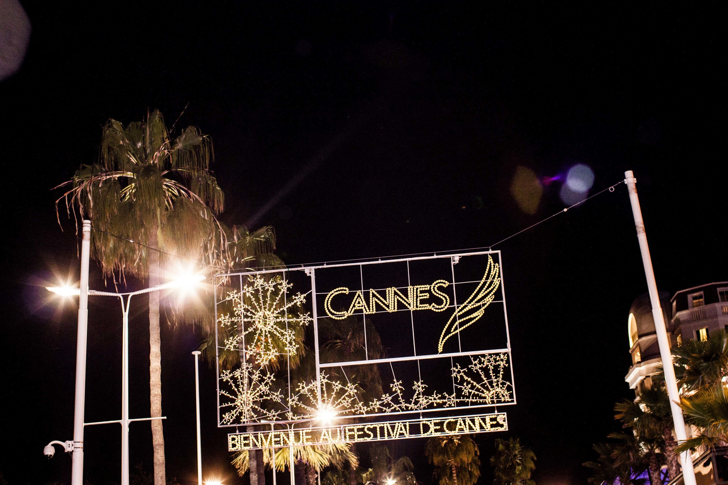 The 65th Cannes   International Film Festival