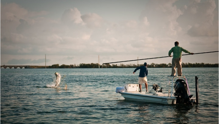 What is the best saltwater fly rod and reel for tarpon if money is no object?  Read on and I will give you a few opinions.