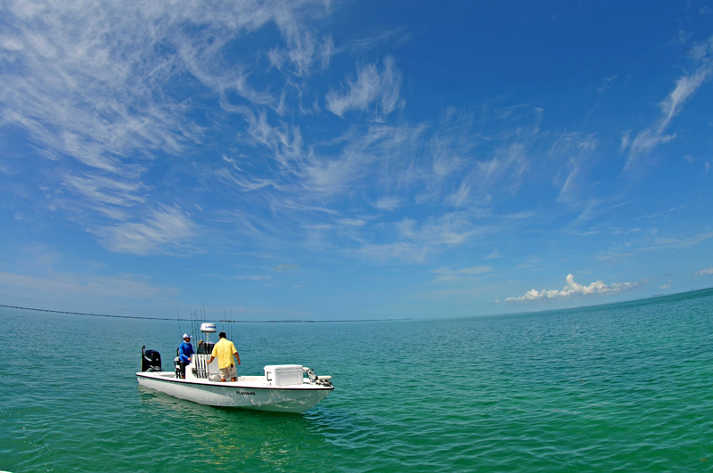 The yellowfin 24 foot bay boat can go to the flats, offshore, and everywhere in between