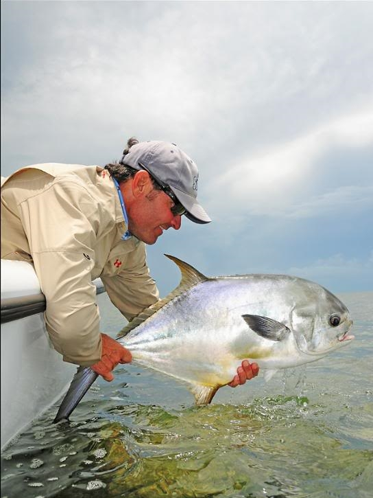 Permit are commonly found in the shallow water flats of the florida keys