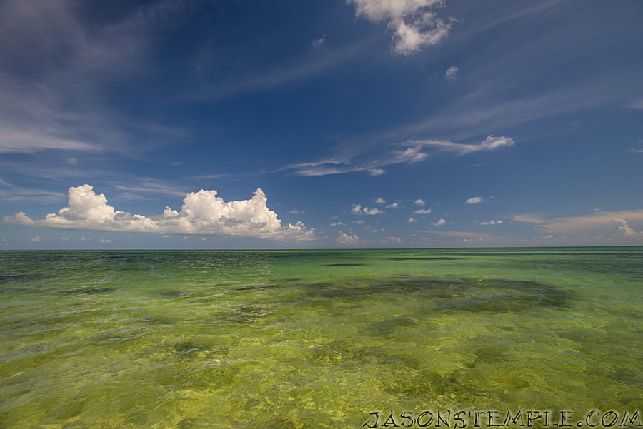 florida-keys-fishing-flats-slam-saltwater-experience