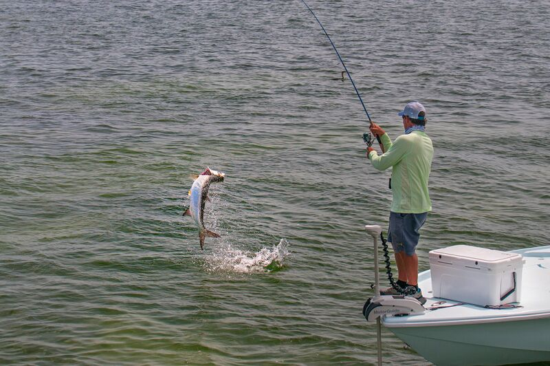A strong and simple knot from braid to fluorocarbon leader resulted in landing this awesome little tarpon