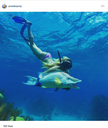 girl-spearfishing-for-hogfish-in-florida-keys