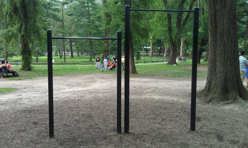 Pullup bars in NYC Central Park. No matter where you go, you can probably find a playground or public park with some sort of bar.
