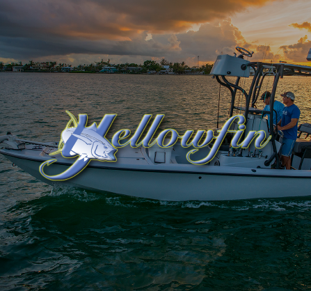 Yellowfin-03.png