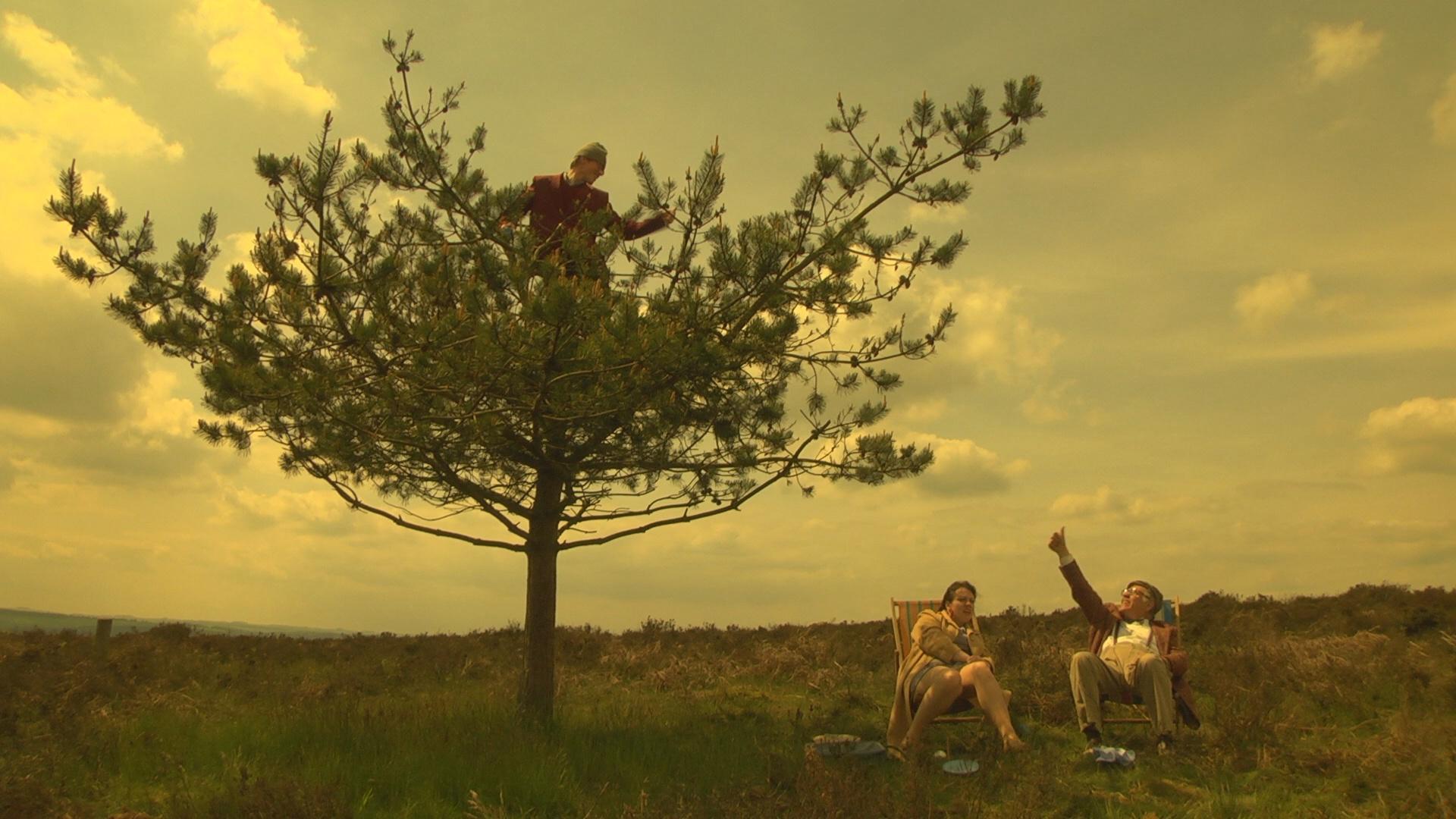 Family and Tree.jpg