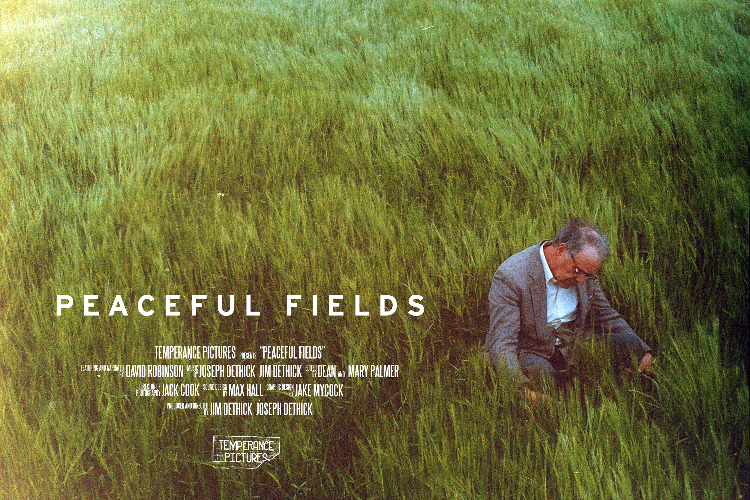 Dav Poster Vimeo.jpg