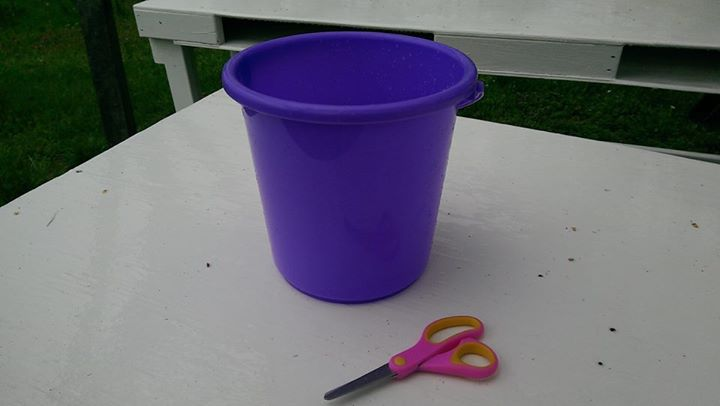 1. We provide you with scissors and a bucket or picking basket to carry your flowers. If you want to keep your bucket you can purchase it at the checkout, picking baskets are not for sale.