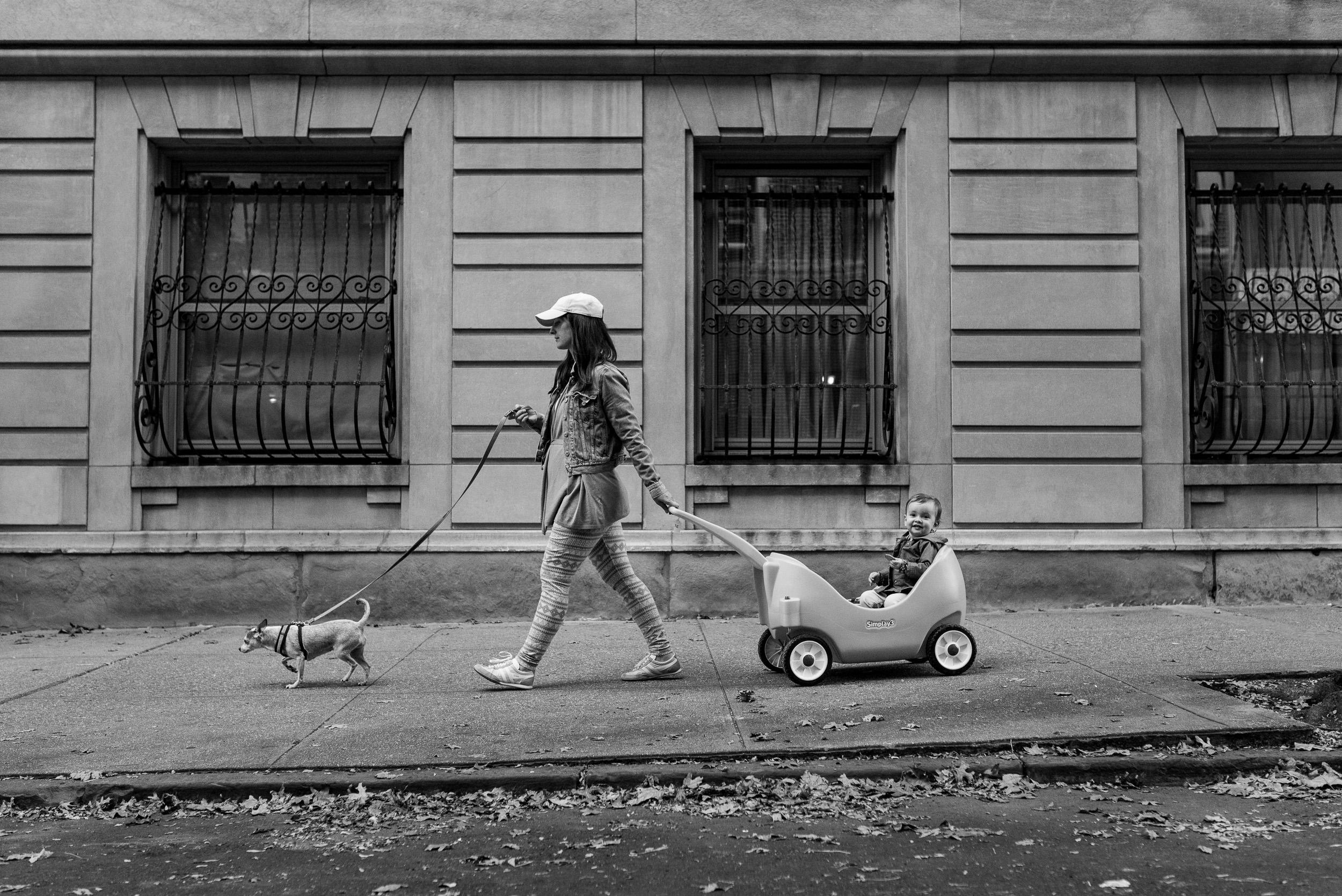 Brooklyn Heights mom walks little dog and pulls baby in Radio Flyer