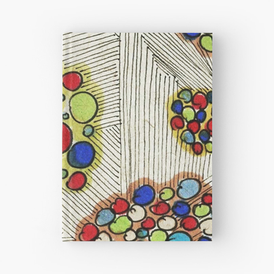 naomi hardcover journal